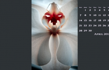 FREE April Desktop Calendar