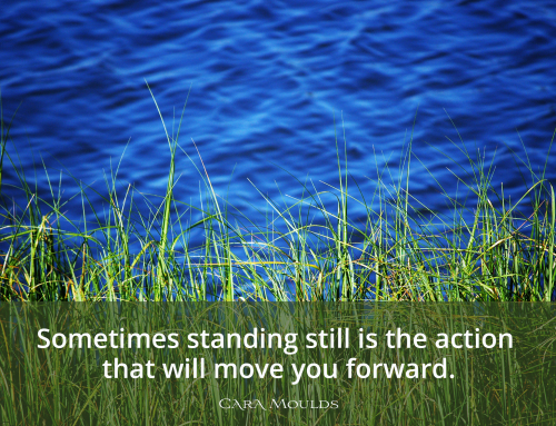 Standing Still to Move Forward