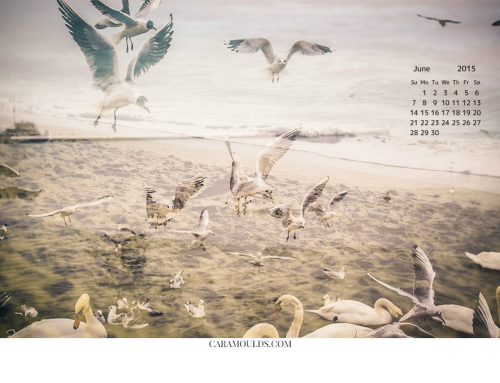 Desktop Wallpaper Calendar June 2015